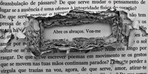 Poemografias